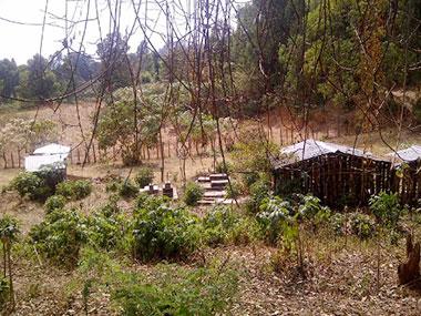 Der Friedhof von Komto
